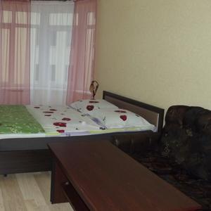 Однокомнатная VIP квартира в центре города Трускавец